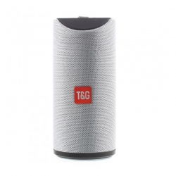 Портативна Bluetooth-колонка TG-113 Gray